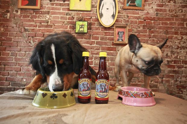 пиво для собак фото