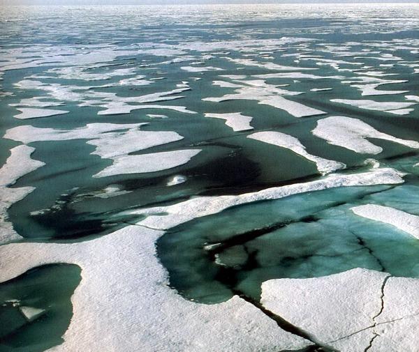 Льды Арктики и Антарктики