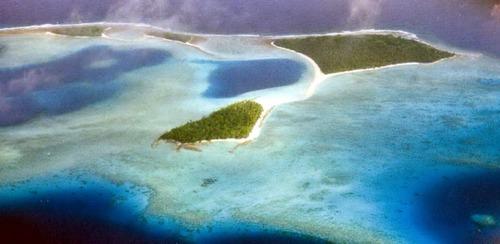 Виды коралловых рифов