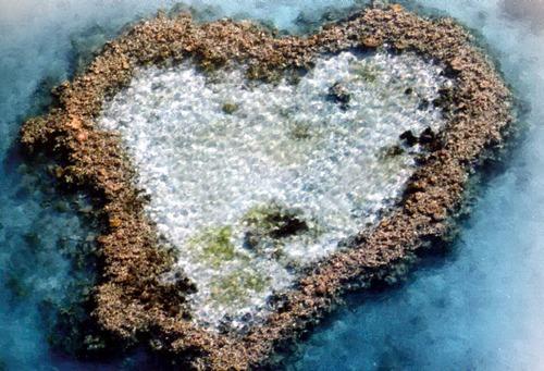 Сердцевидный риф фото
